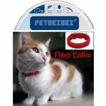 Kill Flea & Tick Collar For Cat Pet Supplies Product Adjustable For Small Dogs Flea Collars - intl ราคาถูกที่สุด ส่งฟรีทั่วประเทศ