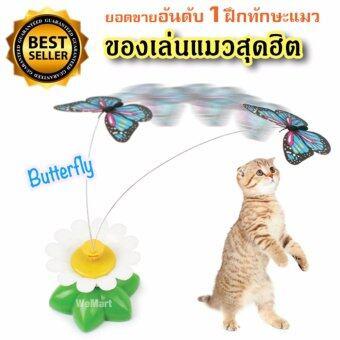 ของเล่นแมว ของเล่นน้องแมว ฝึกทักษะ จับผีเสื้อน้อย ผีเสื้อบินอัตโนมัต New ของเล่นสัตว์เลี้ยงสุดฮิต !!!