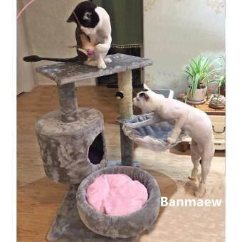 คอนโดแมว catcondo ของเล่นแมว บ้านแมว ที่นอนแมว ของใช้แมว รุ่น Korea Cat สีเทา