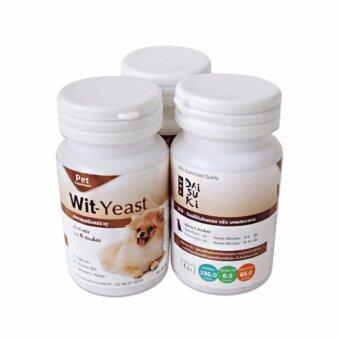 Daisuki Wit-Yeast อาหารเสริมแร่ธาตุ วิตามินบำรุง (3 กระปุก)