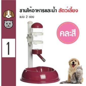 Pet Feeder ชามให้อาหารและน้ำแบบ 2 ช่อง + ขวดน้ำพลาสติก สำหรับสุนัขและแมว