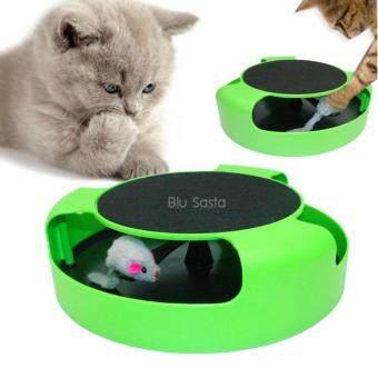 ของเล่นแมว เกมส์จับหนู Catch The Mouse ของเล่นแมวไล่จับหนู วงล้อจับหนู ที่ลับเล็บแมว ของเล่นสัตว์เลี้ยง