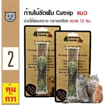 Catwant Catnip Stick ก้านไม้ขัดฟัน ตำแยแมว กัญชาแมว ขนมแมว ของเล่นแมว ขนาด 12 ซม. x 2 ชิ้น