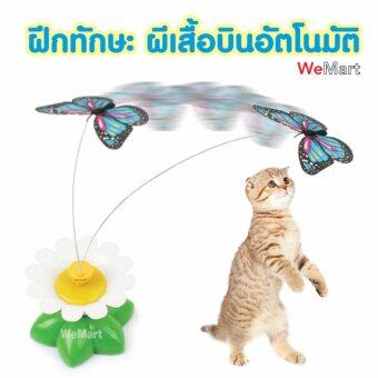 ของเล่นแมว ของเล่นน้องแมว มาใหม่! แมวจับผีเสื้อน้อย ผีเสื้อบินอัตโนมัต ฝึกทักษะแมว
