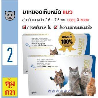 Revolution ยาหยดหลัง ยาหยอดกำจัดเห็บหมัด ไร ป้องกันพยาธิหนอนหัวใจ สำหรับแมวทุกสายพันธุ์ อายุ 6 สัปดาห์ขึ้นไป น้ำหนัก 2.6-7.5 กิโลกรัม (3หลอด/ กล่อง) x 2 กล่อง