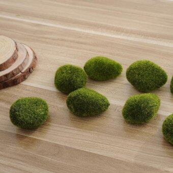 Harga Aquarium Moss ball 5Pcs Moss Aquarium Plant Cladophora Underwater Fish Ornament