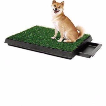 PetZoom ถาดหญ้าเทียมฝึกสุนัขขับถ่ายแบบลิ้นชัก รุ่น PP-2025D (สีเขียว)
