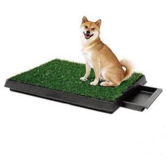 PetZoom PetZoom ถาดหญ้าเทียมฝึกสุนัขขับถ่ายแบบลิ้นชัก รุ่น PP-2025D (สีเขียว )
