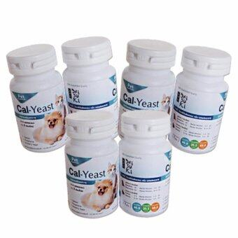 Daisuki Cal-Yeast อาหารเสริมแร่ธาตุ แคลเซียมบำรุง (6 กระปุก)