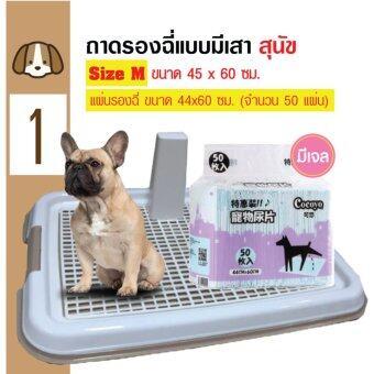 Dog Toilet ถาดฝึกฉี่ ถาดรองฉี่ ห้องน้ำสุนัข แบบมีเสา Size M 45x60 ซม. + Cocoyo แผ่นรองซับสัตว์เลี้ยง แผ่นรองฉี่สุนัข แบบมีเจล ไซท์เล็ก 44x60cm (50 แผ่น)
