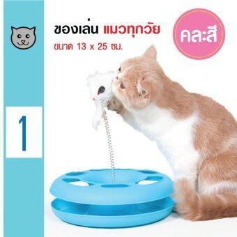 Cat Toys ของเล่นแมววงกลม พร้อมขน/หนูตบ สำหรับแมวทุกวัย ขนาด 13x25 ซม.