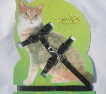 Harga Rorychen Cat Traction Rope Walking Cat Rope Tied Cat Rope Jumping Cat Rope Pet Chest Strap Cat Chain - intl