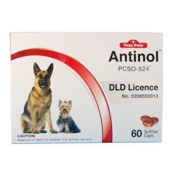 Vetz Petz Antinol อาหารเสริมบำรุงข้อสำหรับสุนัข บรรจุ 60 caps