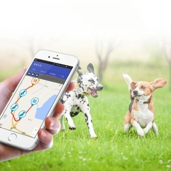Mini Personal Dog Cat Collar Pet Collar Locator GPS Tracker GPRS Tracking Collar - intl