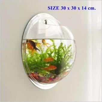 ตู้ปลาแขวนผนัง อะคริลิค ขนาดใหญ่ 30*30*14cm. เลี้ยงปลาได้จริง
