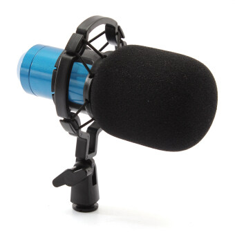 BM800 Dynamic Condenser Microphone Mic Sound Studio Recording Kitwith Shock Mount Blue