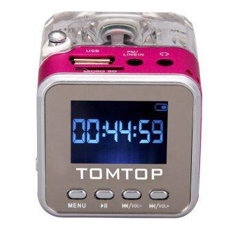 เพลงดิจิตอลแบบพกพามินิ MP3/4 ดิสก์ขนาดเล็กผ่านลำโพงเครื่องเล่นวิทยุ Fm SD/TF ดอกกุหลาบ