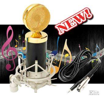 Elit ไมโครโฟน ไมค์อัดเสียง BM5000 Professional Condenser Microphone for Computer Recording Studio Performance Mic Shock Mount (Black)