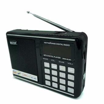 DT ลำโพงพกพา Music Box รุ่น WS-2291 MP3 วิทยุ FM AM (สีดำ)