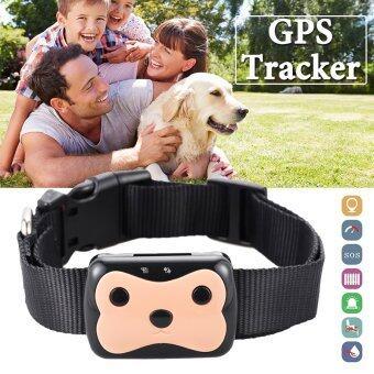 GPS แทกเกอร์ กันน้ำ สำหรับ สุนัข สัตว์เลี้ยง