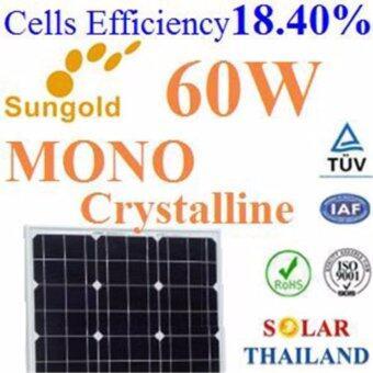 60W แผงโซลาร์เซลล์ MONO Crystalline PV Module High Cell Efficiency 18.40%