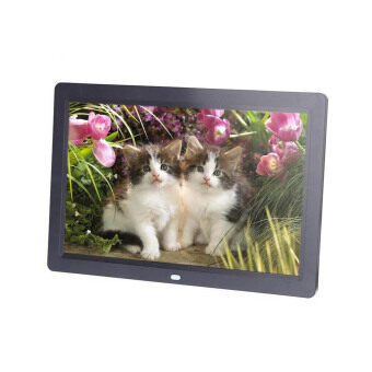 Allwin 10.1' Android 4.4 WIFI HD Digital Photo Frame Alarm Video Player + Remote US