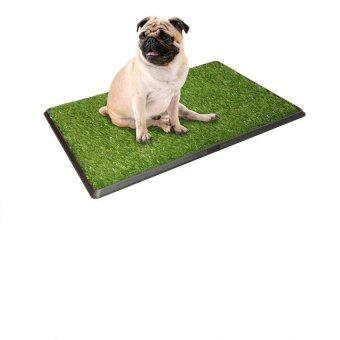PetZoom ถาดหญ้าเทียมฝึกสุนัขขับถ่าย รุ่น PP-2025 (สีเขียว)