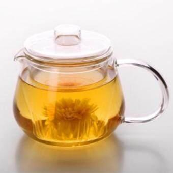 AZ31Glass Teapot กาน้ำชา แก้วใส ที่กรองแก้วใส 400ml
