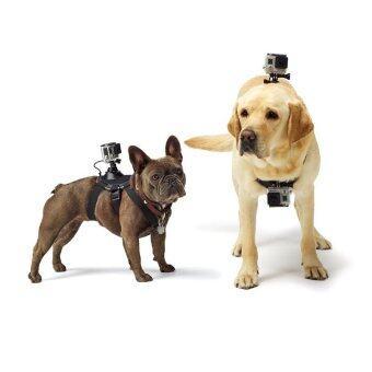 Pet Pirateอุปกรณ์ยึดกล้องติดหลังหรือหน้าอกสุนัข ใช้ได้กับsport cameraทุกรุ่น