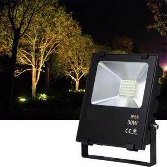 Light Farm Floodlight LED 30W โคมไฟสปอร์ตไลท์ LED 30 วัตต์แพ็ค 1 ชุด