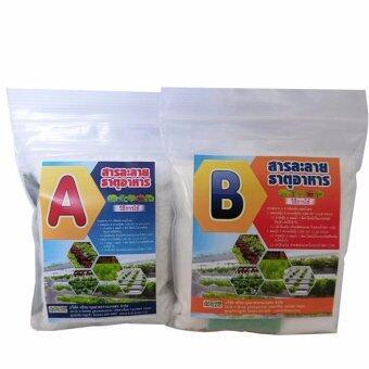 ปุ๋ยสารละลาย A+B สำหรับผักไฮโดรโปนิกส์ พืชระบบน้ำ