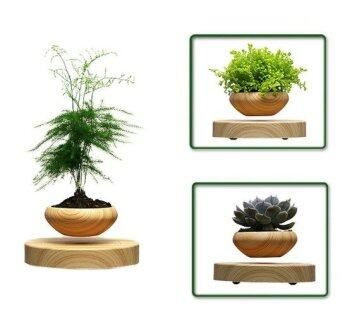 คาถาลมบอนไซ (ไม่มีพืช) ความสมดุลสะเทือนแม่เหล็กอ่างกระถางดอกไม้ pottedplant ลอย
