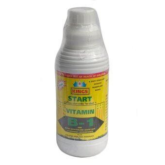 Start B1 น้ำยาเร่งราก Accelerate root solution 1 ลิตร