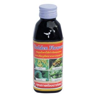 Golden Flower Herbal Insect สมุนไพรกำจัดแมลง และ ศัตรูพืช สูตรเข้มข้น ชนิดน้ำ ขนาด150 ซีซี (1ขวด)