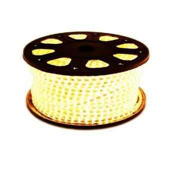 CM Light Tranmere home Light ไฟเส้น LED Strip ยาว 5 เมตร กันน้ำ รุ่น CM-DT-001 - warmwhite (image 0)