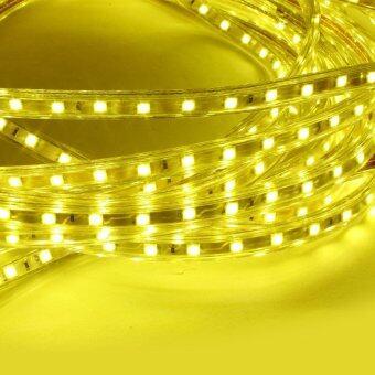 CM Light Tranmere home Light ไฟเส้น LED Strip ยาว 5 เมตร กันน้ำ รุ่น CM-DT-001 - warmwhite (image 1)