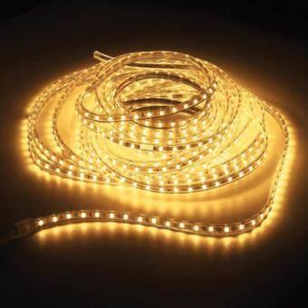 LEDANDLAMP ไฟเส้น LED ROPE LIGHT ฟรีปลั๊กยาว 8 มิลลิเมตร 2 เส้น ( แสงสีเหลือง )