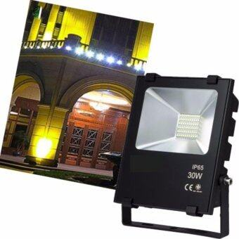 Light Farm ไฟสปอร์ตไลท์ LED กำลังไฟ 30W ใช้ไฟ 220 v แสงขาว Daylight แพ็ค 1 ชุด