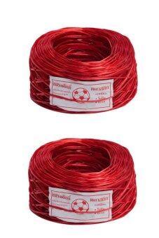 Papamami Plastic Wire rope เชือกฟางเส้นลวด หนักม้วนละ 200 กรัม 2ม้วน (Red)