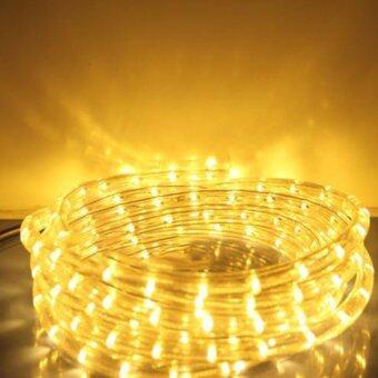 Light Farm ไฟสายยาง LED ท่อกลม 10 ม. สีวอมไวท์ (กระพริบได้)