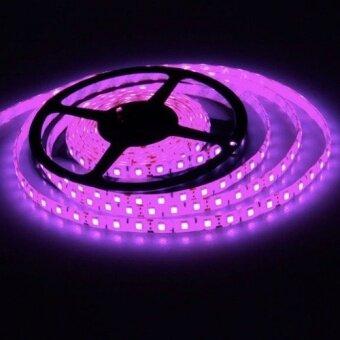 LEDANDLAMP ไฟเส้น LED RIBBON STRIP 12V ขนาด 5 M งานภายใน ( แสงสีชมพู PINK )