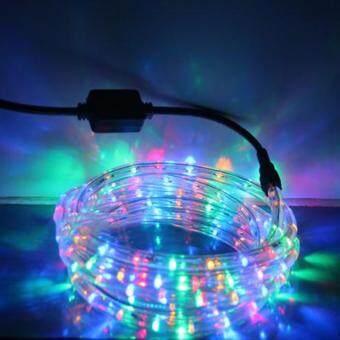 Light Farm ไฟสายยาง LED ท่อกลม 10 ม. สีรวม (กระพริบได้)