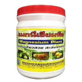 THAIGREENAGRO ไทยกรีนอะโกร THAIGREEN SHOP สินค้าการเกษตร แมกนีเซียมพืช -TM บำรุงพืช สร้างคลอโรฟิลล์