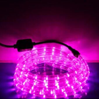 Light Farm ไฟสายยาง LED ท่อกลม 10 ม. สีชมพู (กระพริบได้)