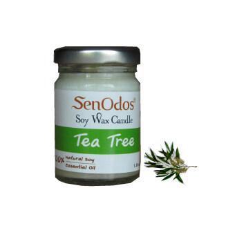 SenOdos เทียนหอมอโรม่า Tea Tree Soy Candle 45 g. - กลิ่นทีทรีออยล์