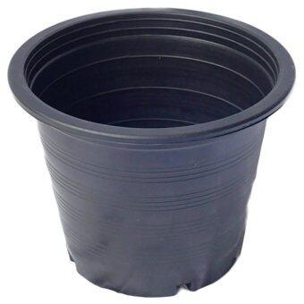papamami Pots Round Black Plastic กระถางพลาสติกกลมสีดำ 8นิ้ว (50ใบ)