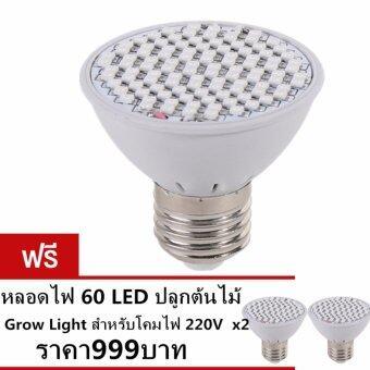sangyaหลอดไฟ 60 LED ปลูกต้นไม้ Grow Light สำหรับโคมไฟ 220V ซื้อ1แถม2