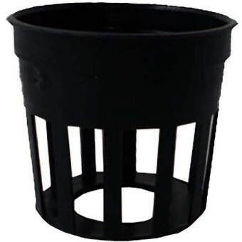 papamami Pots Round Black Plastic กระถางพลาสติกกลมสีดำ 1นิ้ว (90ใบ)