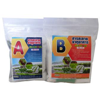 THAIGREEN ปุ๋ยสารละลาย A+B สำหรับผักไฮโดรโปนิกส์ พืชระบบน้ำ