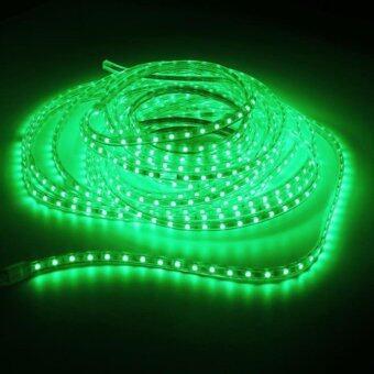 LEDANDLAMP ไฟเส้น LED ROPE LIGHT ฟรีปลั๊กยาว 8 มิลลิเมตร 2 เส้น ( แสงสีเขียว )